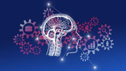 10 необычных фактов о мозге, которые изменят ваш взгляд на жизнь